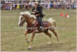 Fogathajtó verseny, 2015 (13/29)