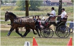 Fogathajtó verseny, 2015 (17/29)