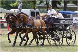 Fogathajtó verseny, 2015 (26/29)